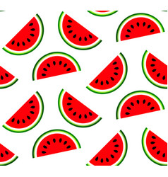 water melon pattern vector image