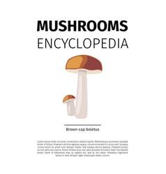 Brown cap boletus mushroom vector