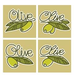 Olive lettering vector