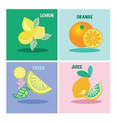 set of four icon lemons and orange vector image