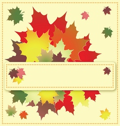 colorful maple leaves on the greeting card vector image