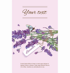 Lavender natural cosmetics banner vector image