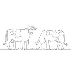 one line cows milk cow animal livestock and beef vector image