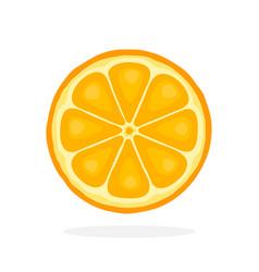 Slice orange vector