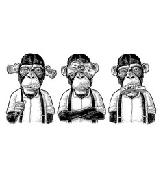 Three wise monkeys not see not hear not speak vector