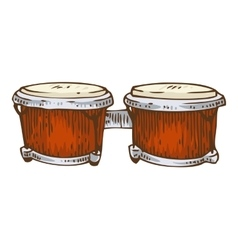 Musical Instrument Red Bongo vector image