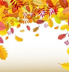 Autumn Background Orange Falling Leaves vector image vector image