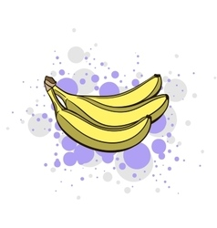 Bright Juicy Banana vector image