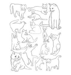 cats line art vector image