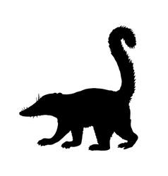 Coati silhouette vector
