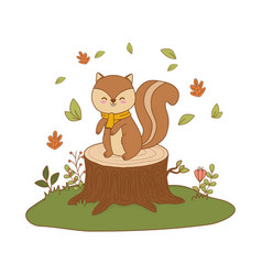 Cute chipmunk in field woodland character vector