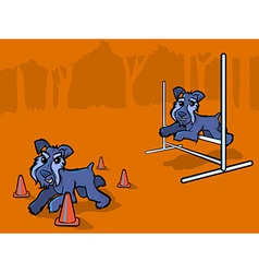 Dog Agility Training Cartoon vector image
