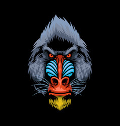 hand drawn style of mandrill monkey head vector image