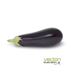 Realistic aubergine icon vector