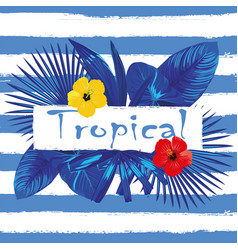slogan tropical hibiscus blue white stripe vector image