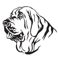Decorative portrait of spanish mastiff vector
