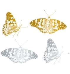 Gold beautiful butterfly set vector