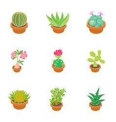 green cactus icons set cartoon style vector image