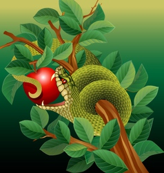 Green Snake in Apple Tree vector