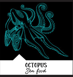 Octopus for a seafood menu vector