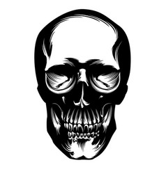 skull pen drawing vector image