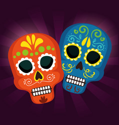 Skulls tradition to day of the dead event vector