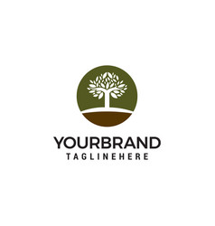 tree logo design template vector image