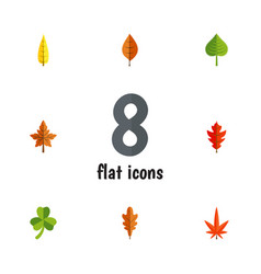 Flat icon foliage set of linden frond alder and vector
