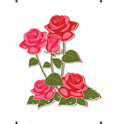 bouquet of roses - red roses vector image