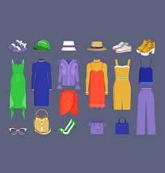 lot of varied colorful stuff vector image