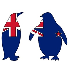 Penguin New Zealand vector image