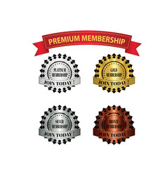 Premium membership badges vector