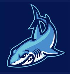 Shark logo mascot sport vector