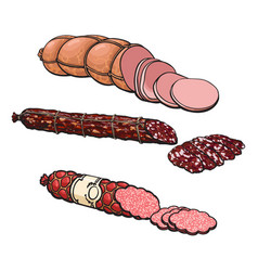 Sketch different sausage type set isolated vector