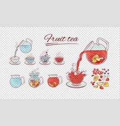 tea constructor fruits brew process make vector image