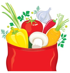 Vegetables fly out of the package seasonings vector image vector image