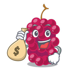 with money bag mulberry fruit on a cartoon table vector image
