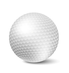 Golf ball vector image