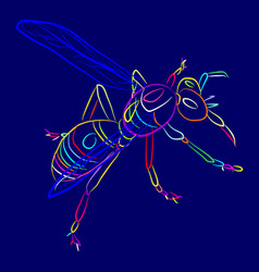 Insect 1-7 vector