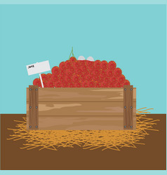 rambutan in a wooden crate vector image