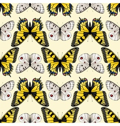 Butterfly seamless3 vector