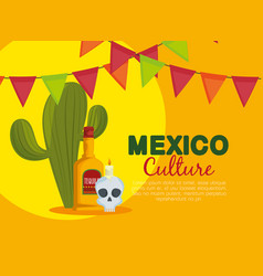 cactus with skull and tequila to traditional event vector image