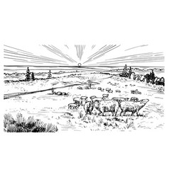 rural meadow a village landscape with sheep vector image