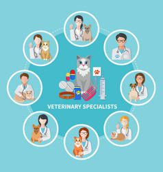 Veterinary specialists flat poster vector