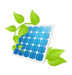 solar cell leaves vector image vector image