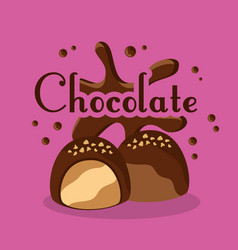 chocolate candies cream chips sugar vector image