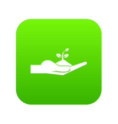 sprout in the human hand icon digital green vector image