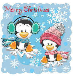 two cute penguins on the snowflakes vector image