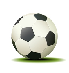 Soccer Ball Isolated on a White Background vector image