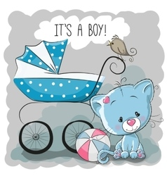 Cat with baby carriage vector image vector image